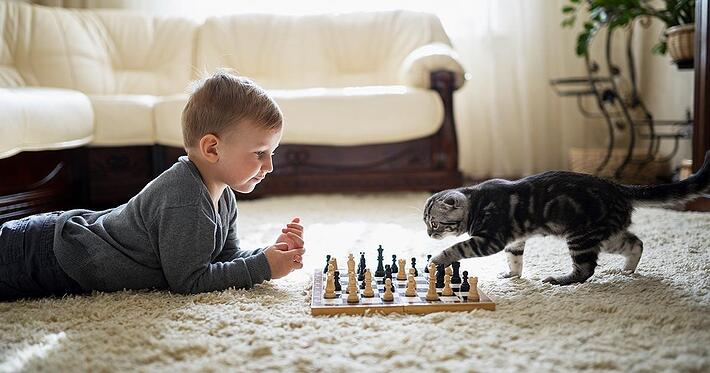 03-Feliway Tu gato es tu aliado durante confinamiento 3