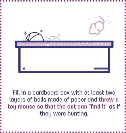 10. cat games#3_cardboardbox