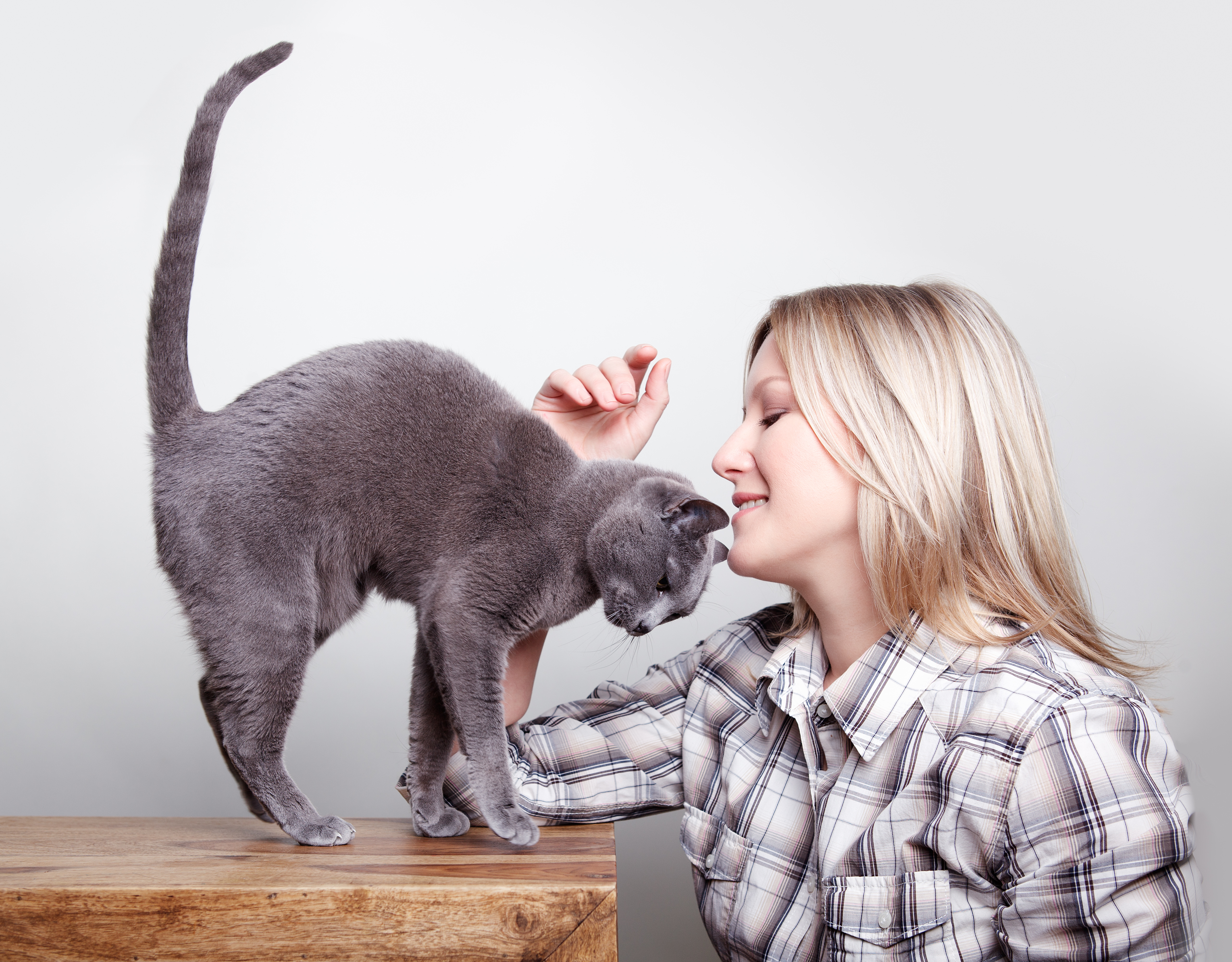 2. 8 maneras sorprendentes de tu gato de decirte Te quiero_5