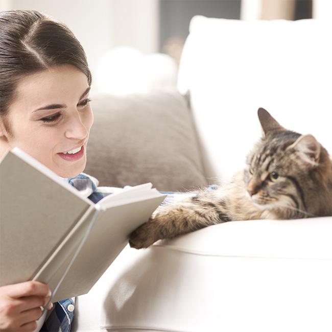 4.Feliway Preparar a tu gato para el desconfinamiento_3