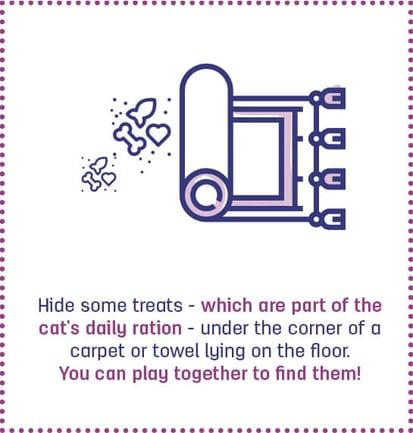 8. cat games#1_hide treats