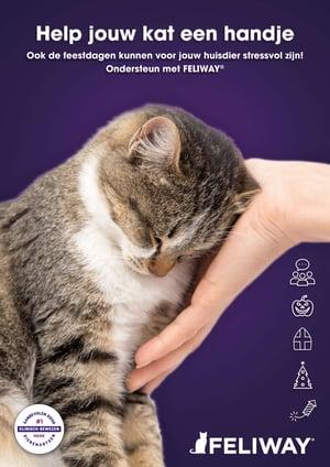 Ook de feestdagen kunnen voor jouw kat stressvol zijn. Ondersteun met FELIWAY!