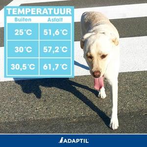 temperatuur asfalt