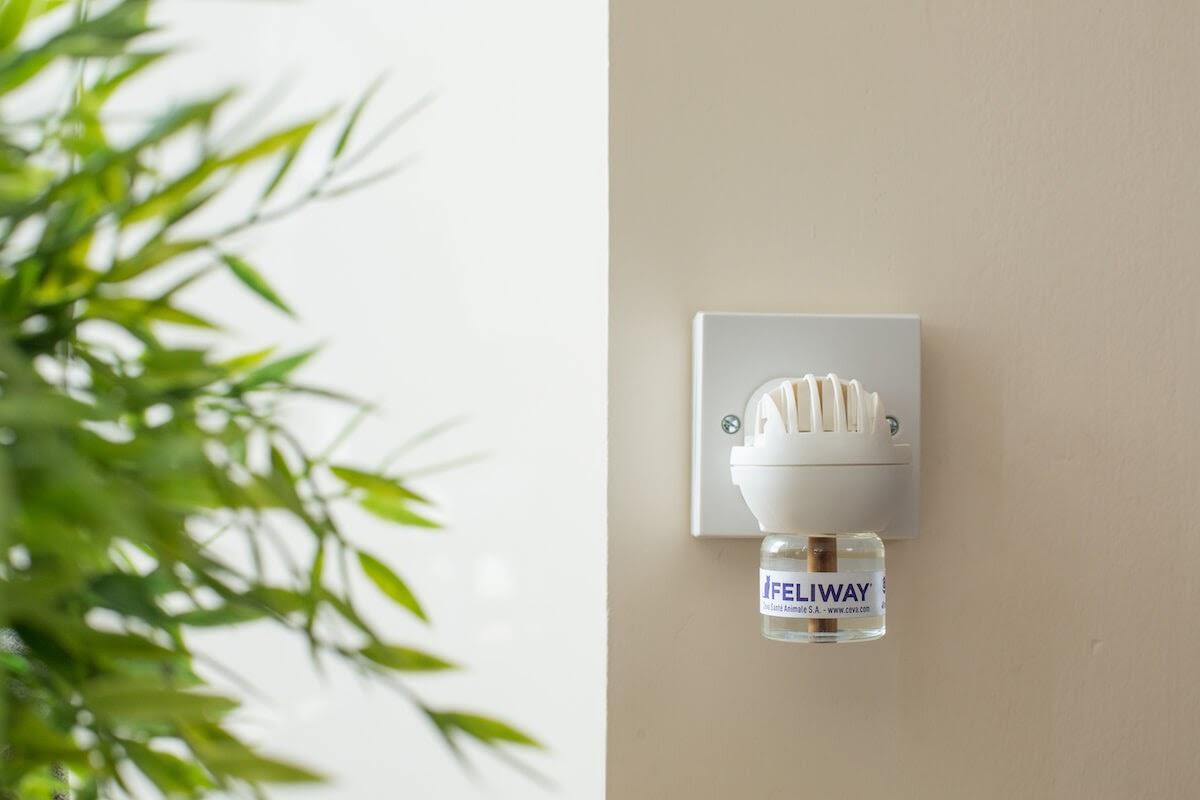 FELIWAY diffuser plugged in wall