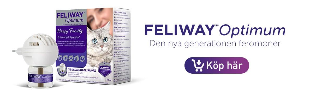 se var du kan köpa Feliway Optimum