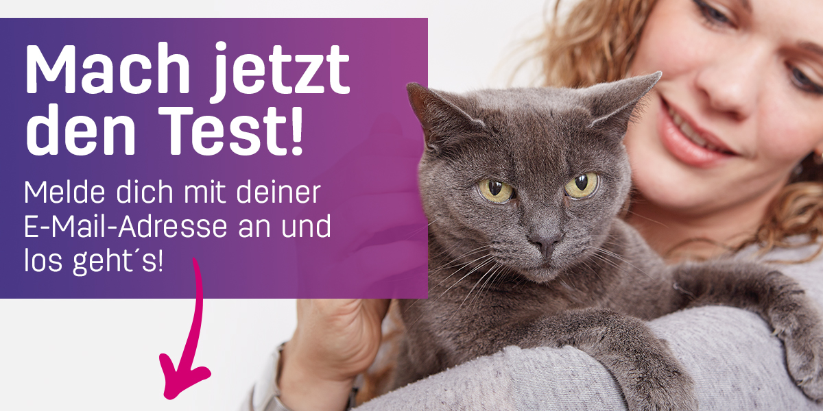 blog_katzen_app_statischer_pfeil (2)