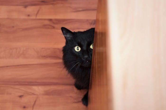 black cat hiding behind furniture