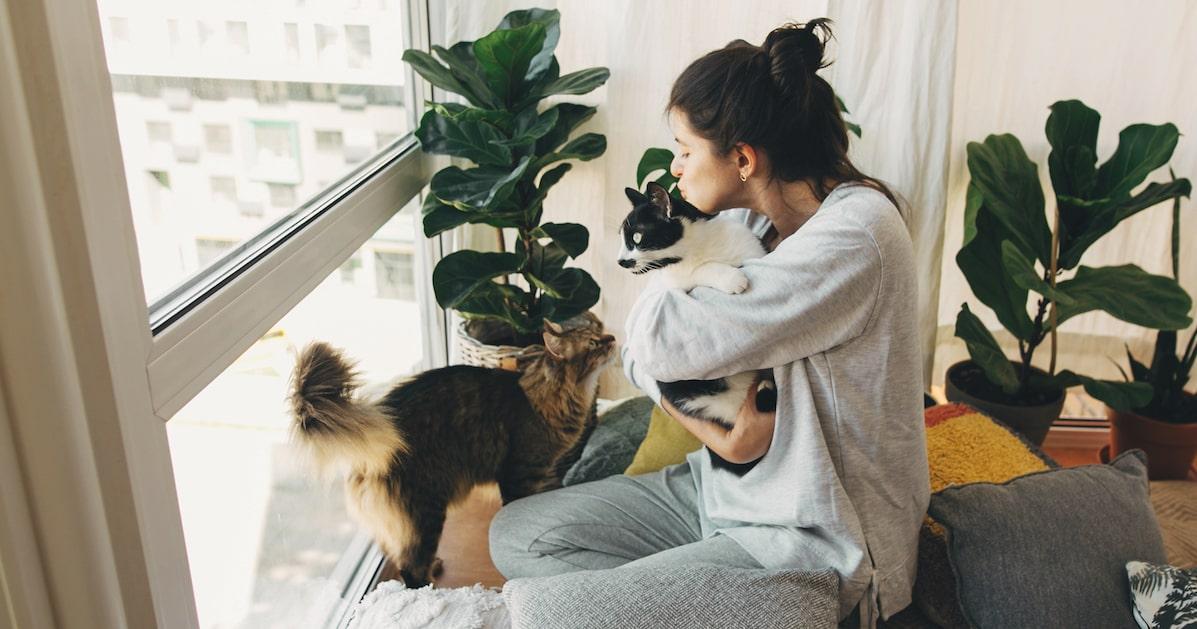 Frau kuschelt mit Katzen
