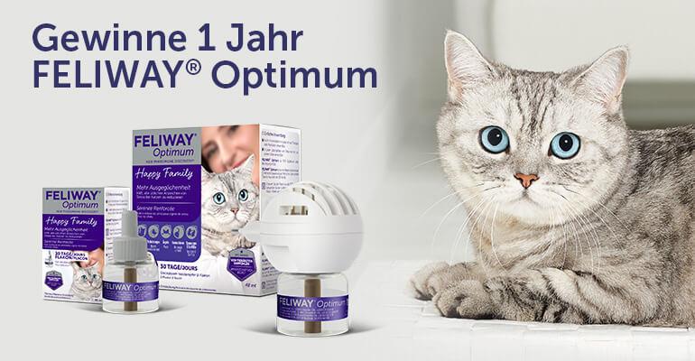 Gewinne 1 Jahr FELIWAY Optimum für deine Katzen