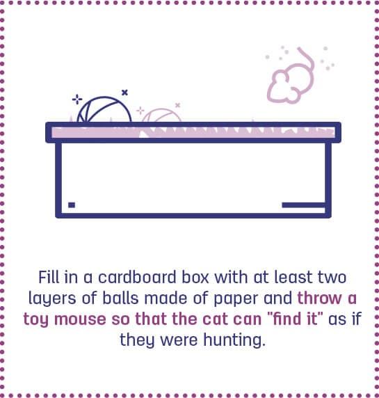 Jogo de caça para gatos