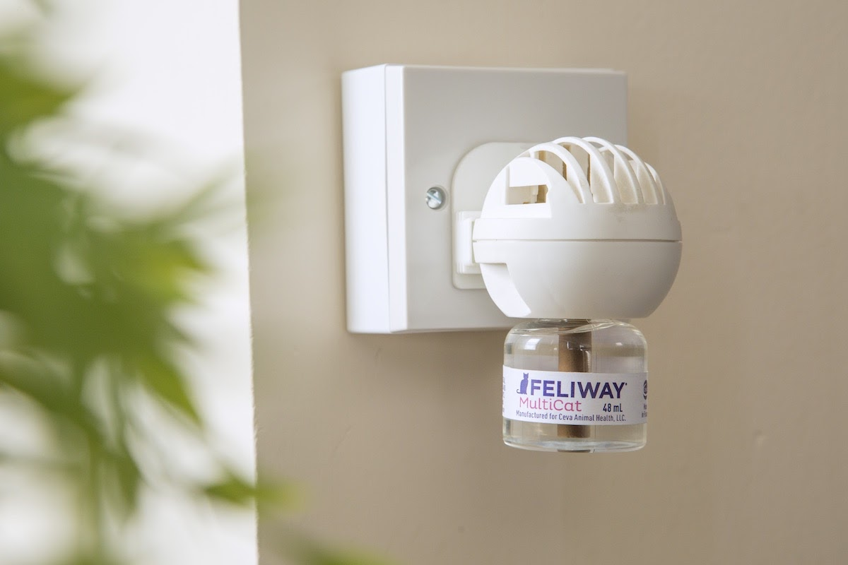 feliway diffuser plug in