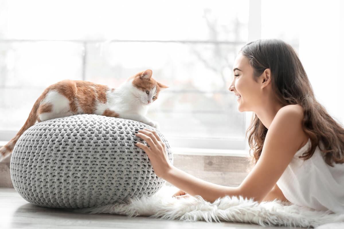Il tuo amico felino è il tipo di gatto che ti accoglie quando torni a casa? Di sera ama acciambellarsi sulle tue gambe? O è un po' distaccato e preferisce interagire con i suoi tempi?