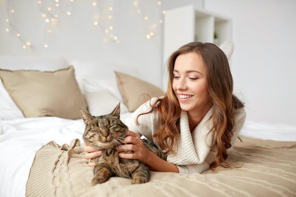 votre chat adorera que vous passiez plus de temps avec lui