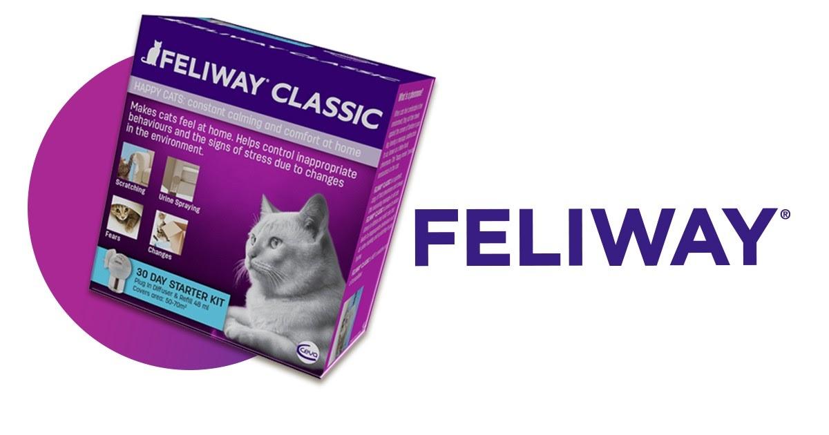 Feliway för en trygg miljö